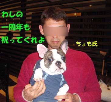 img20080201_3.jpg