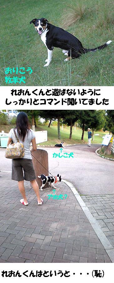 img20080910_3.jpg