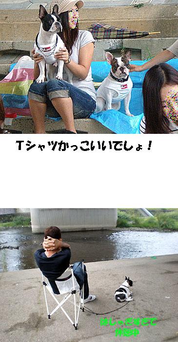 img20080918_4.jpg