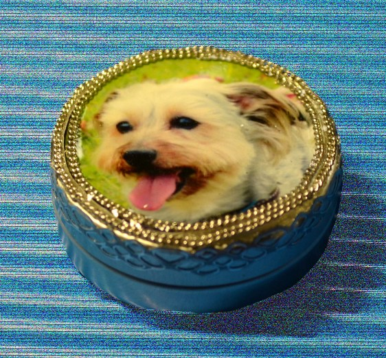 09アルミ缶