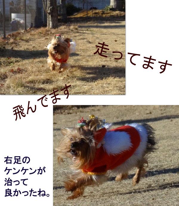 3paco-run.jpg