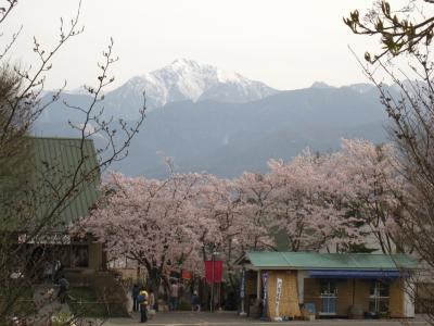 桜と山とアウトレット。
