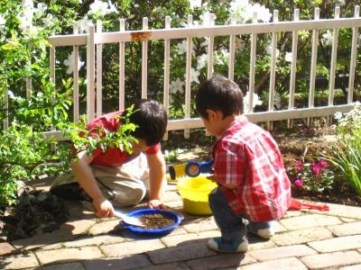 甥っ子たちは庭でもくもくと遊ぶ。