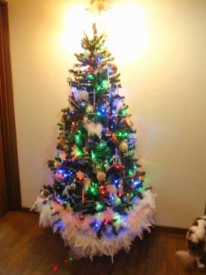 立派なクリスマスツリー!いいなー!