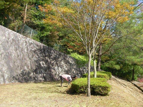 201410231136お山の公園③