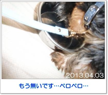 liri32.jpg
