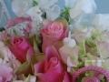 bell rose