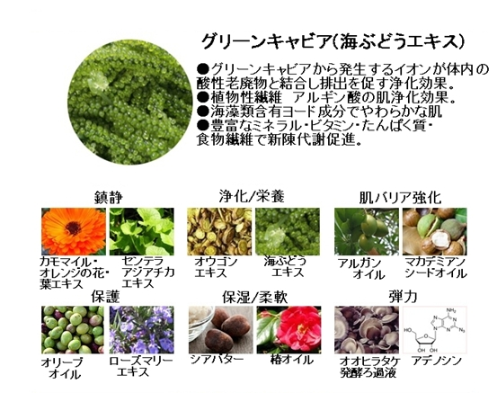 【アイソイ】グリーンキャビアボディリフティング&モイスチャーコントロールクリーム
