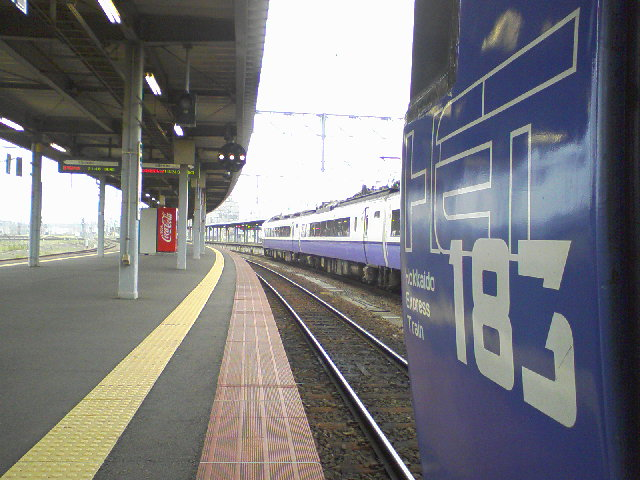 SA3A0287.jpg