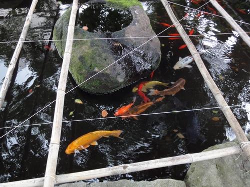 220717長浜神社4