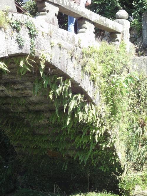 220724 黒岩橋10