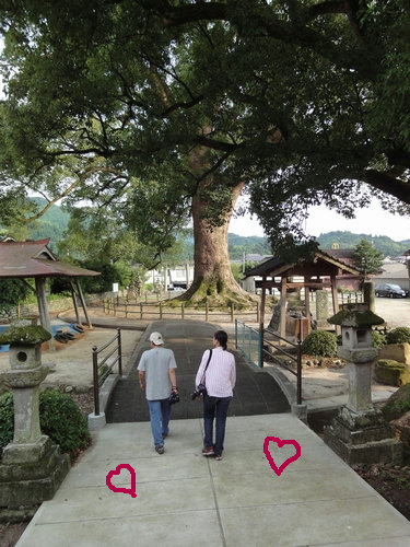 220724 津江神社9