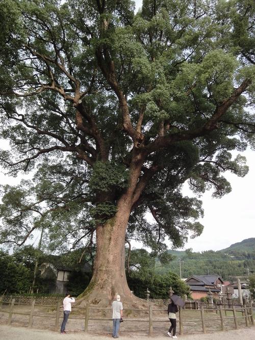 220724 津江神社6