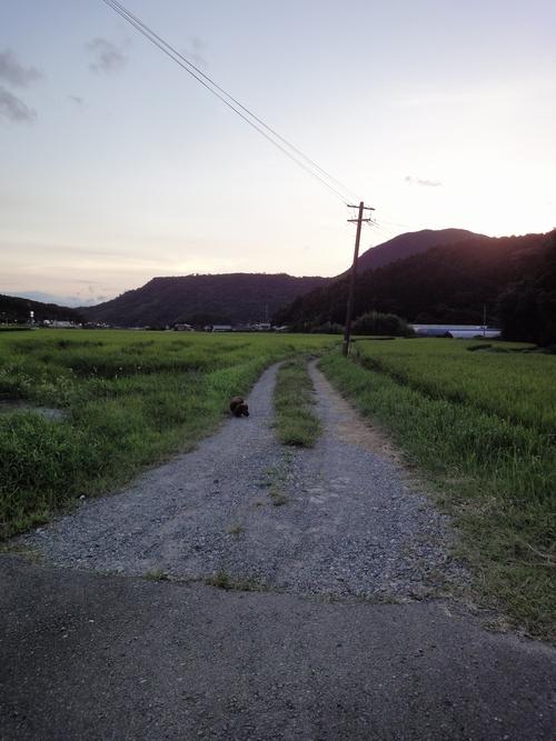 220815 田川2
