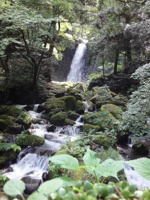 220818 白糸の滝3