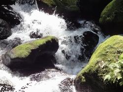 220818 白糸の滝5