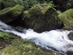 220818 白糸の滝4