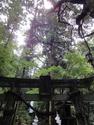 220818 白糸の滝9