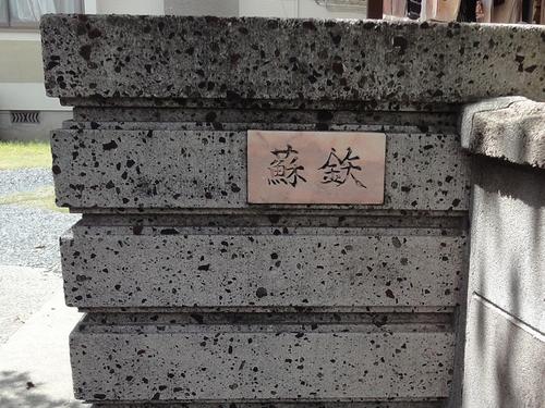 220828 大野下ソテツ1