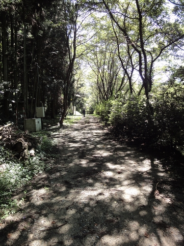 220904 熊延鉄道13