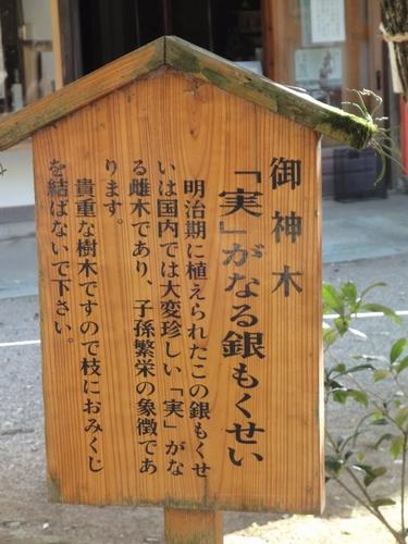 220828 大宮神社12