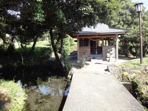 220911 池の川水源2