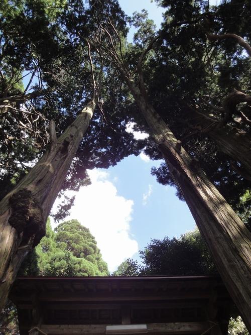 220911 高森阿蘇神社5