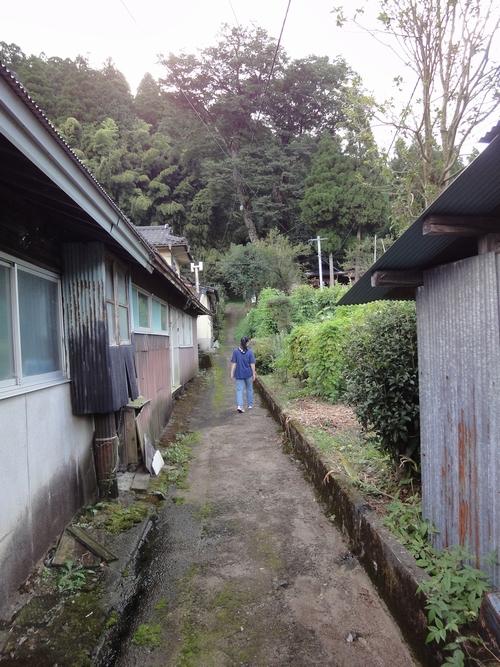 220920 竹の熊大ケヤキ4