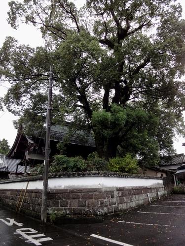 221009 八坂神社1