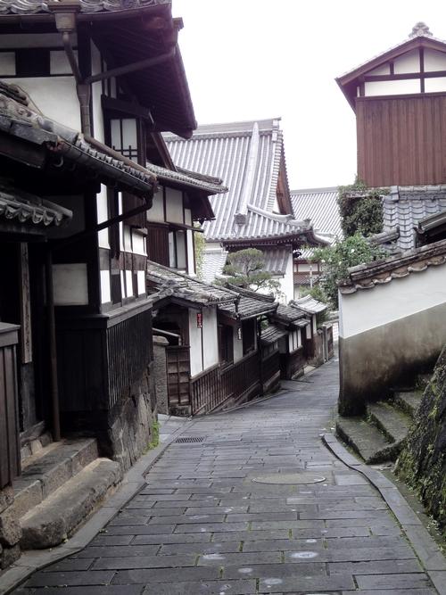 221009 仁王座歴史の道8
