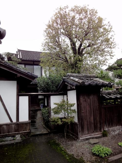 221009 仁王座歴史の道13