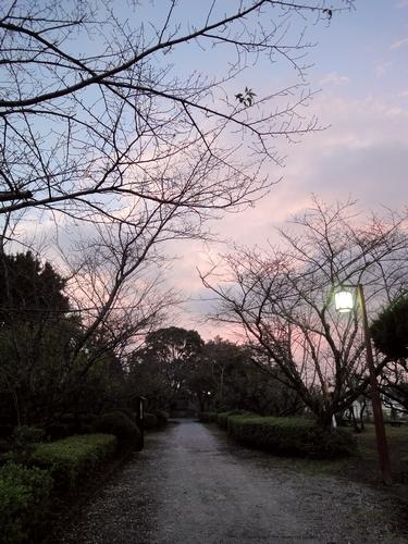 221009 臼杵城跡11