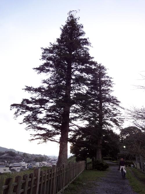 221009 臼杵城跡17