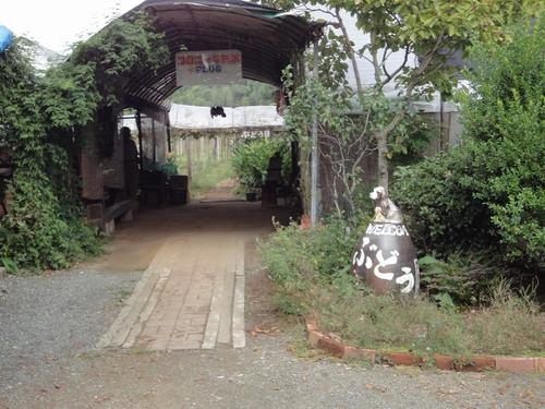 221023 河野ぶどう園1