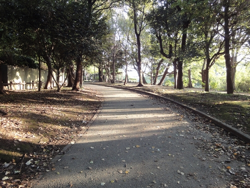 221027 ラボ散歩2