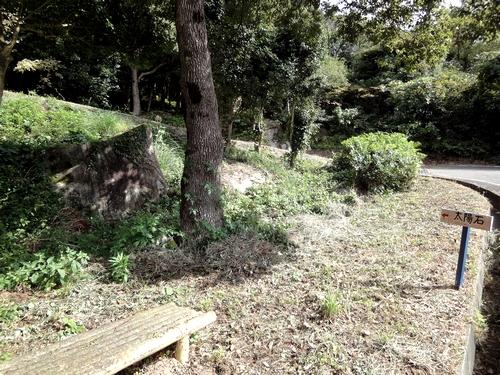 221030 白嶽森林公園4