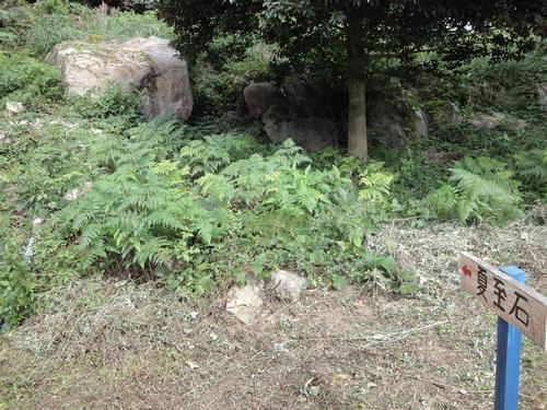 221030 白嶽森林公園3