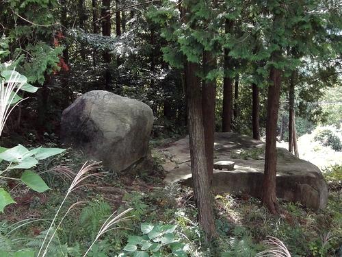 221030 白嶽森林公園2