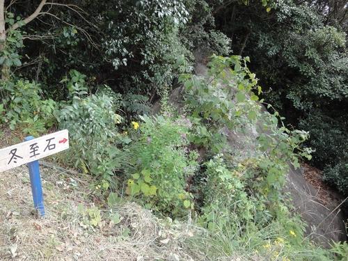 221030 白嶽森林公園5