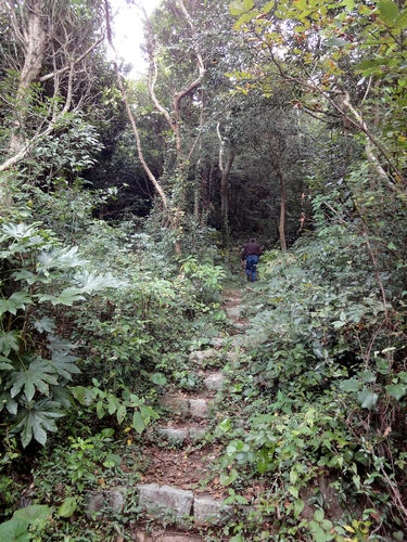 221030 白嶽森林公園12