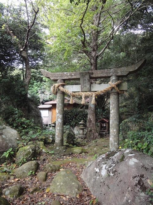 221030 白嶽森林公園10