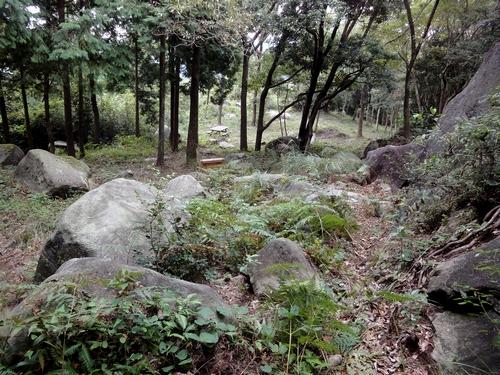 221030 白嶽森林公園22
