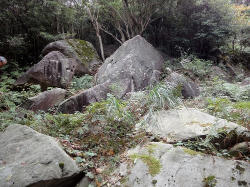221030 白嶽森林公園19