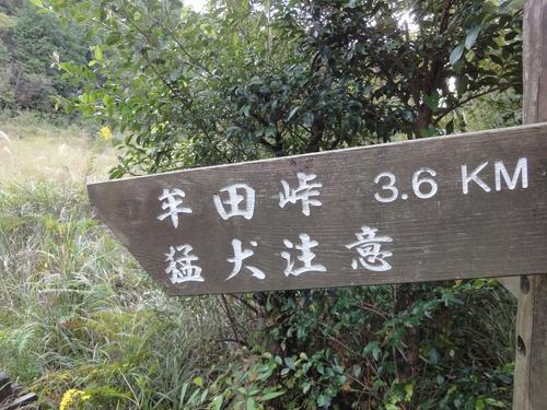 221030 白嶽森林公園45