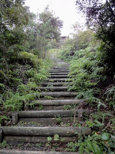 221030 白嶽森林公園50
