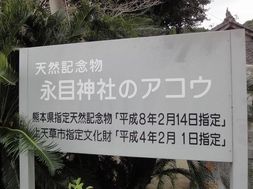 221030 永目神社2