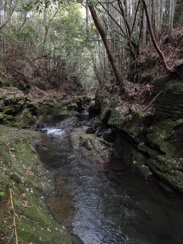 221031 数鹿流滝5