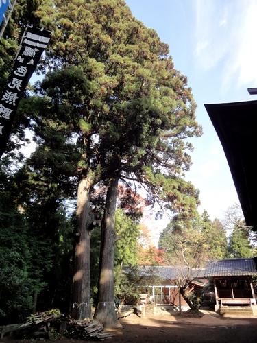 221106 下色見熊野座神社5
