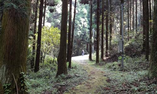 221106 上色見熊野座神社27