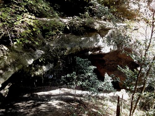 221106 上色見熊野座神社24